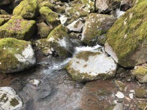 水源の写真