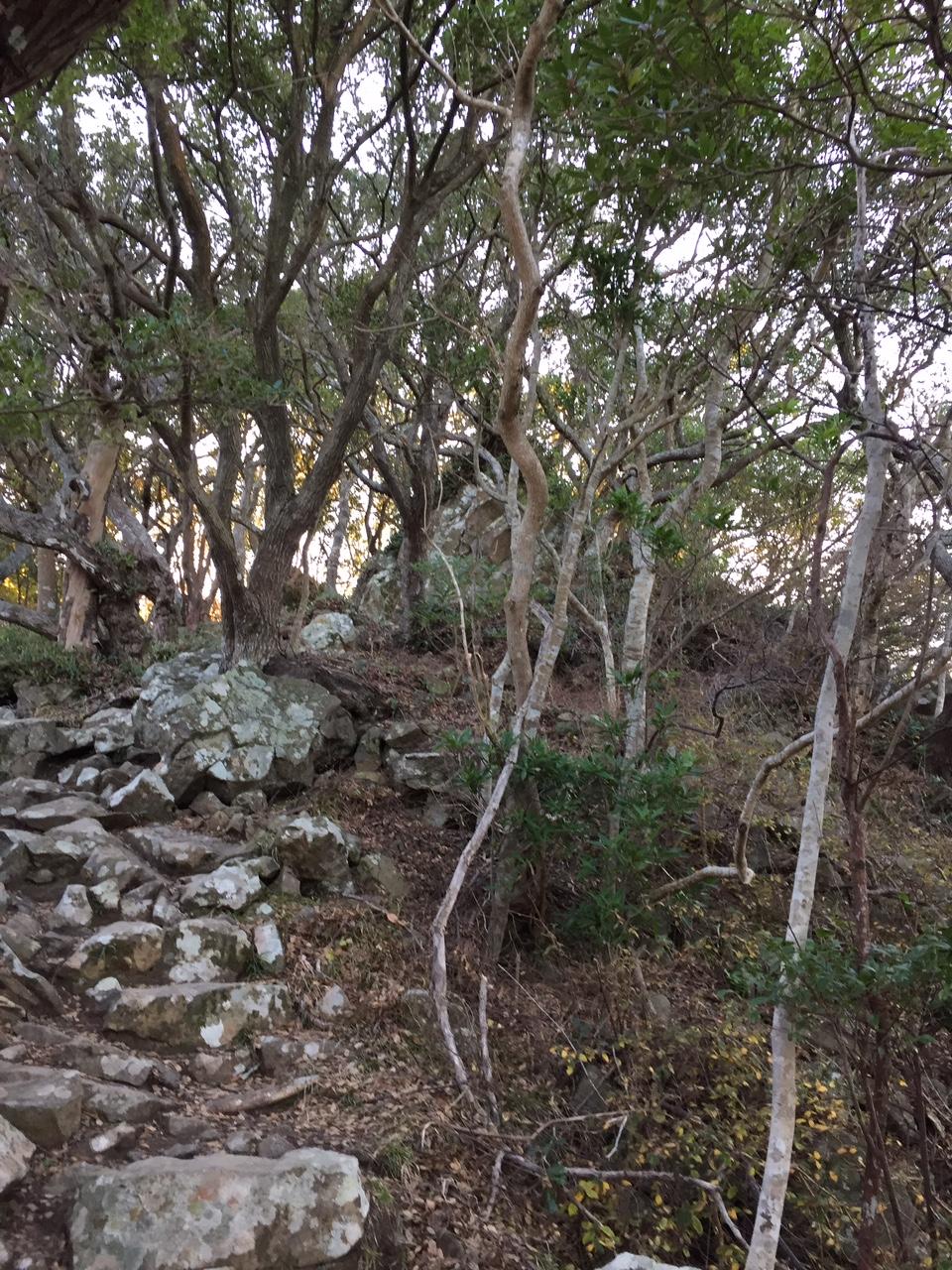 烏帽子山山頂付近の岩