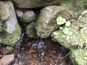 湧き出る清水