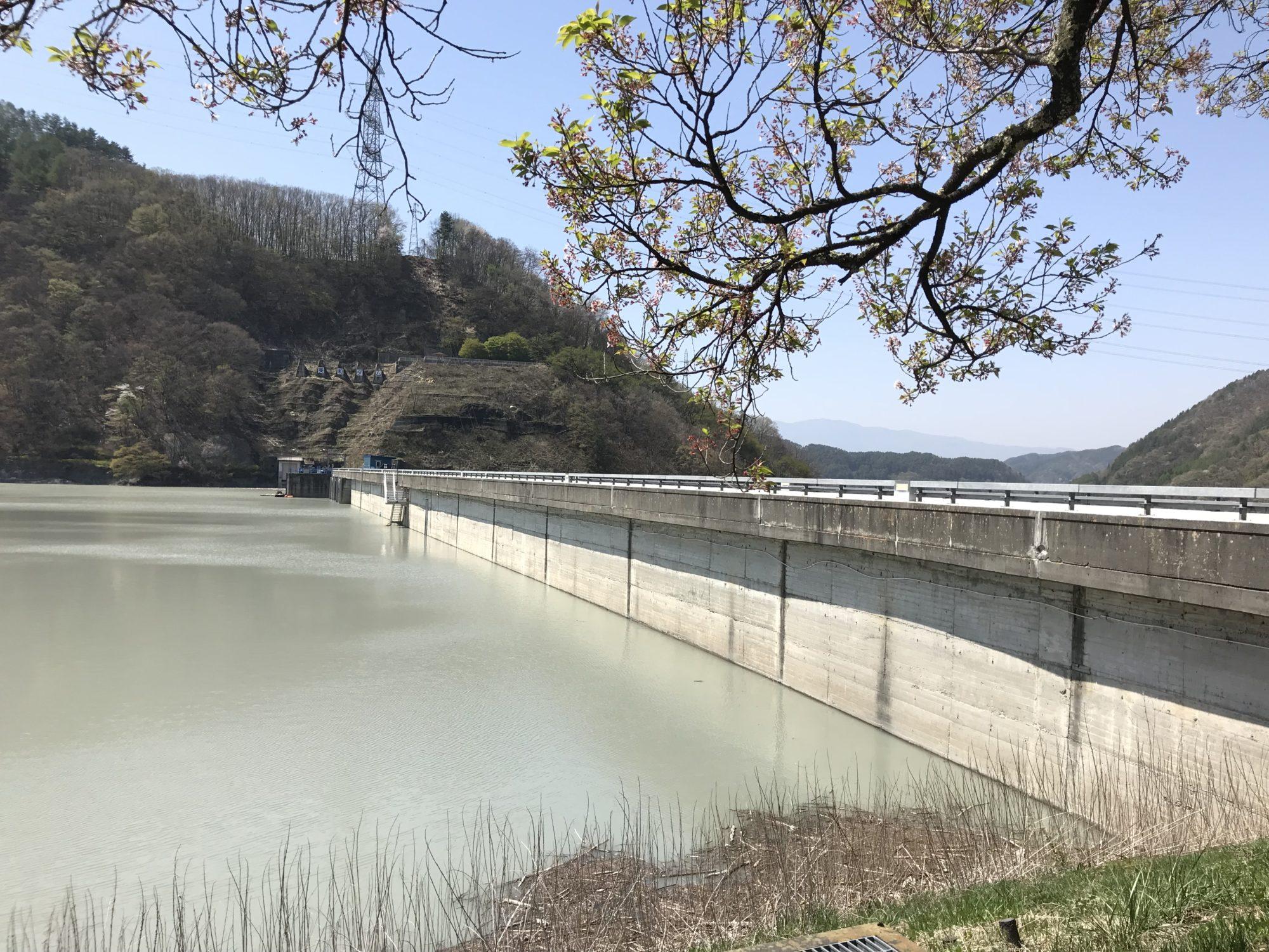 美和湖のダム堤防