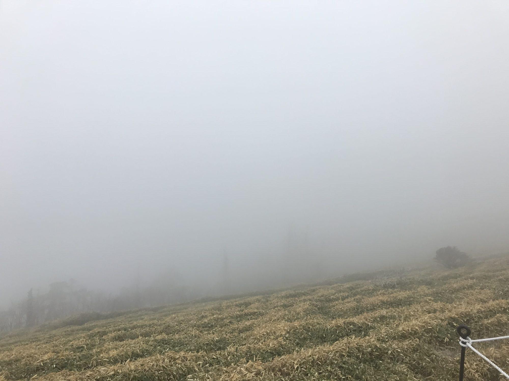 霧で何も見えませんでした。