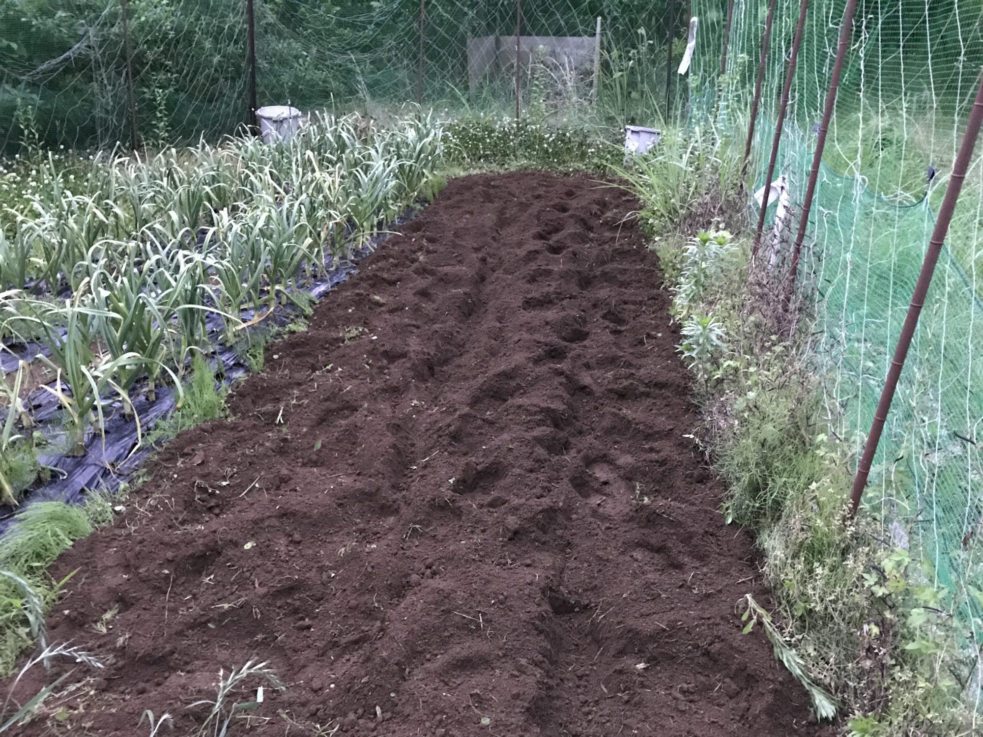 耕運後の畑