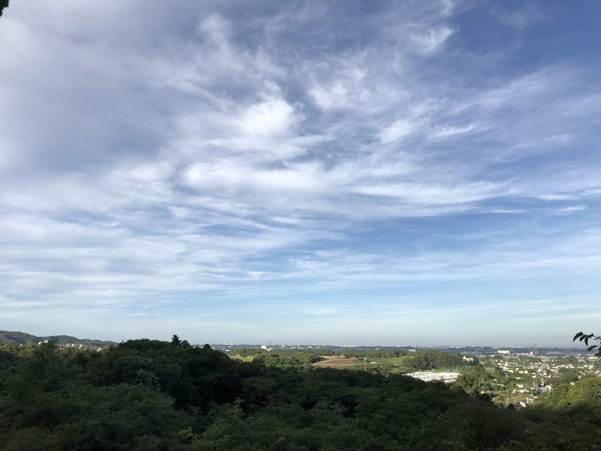 飯山長谷寺からの風景