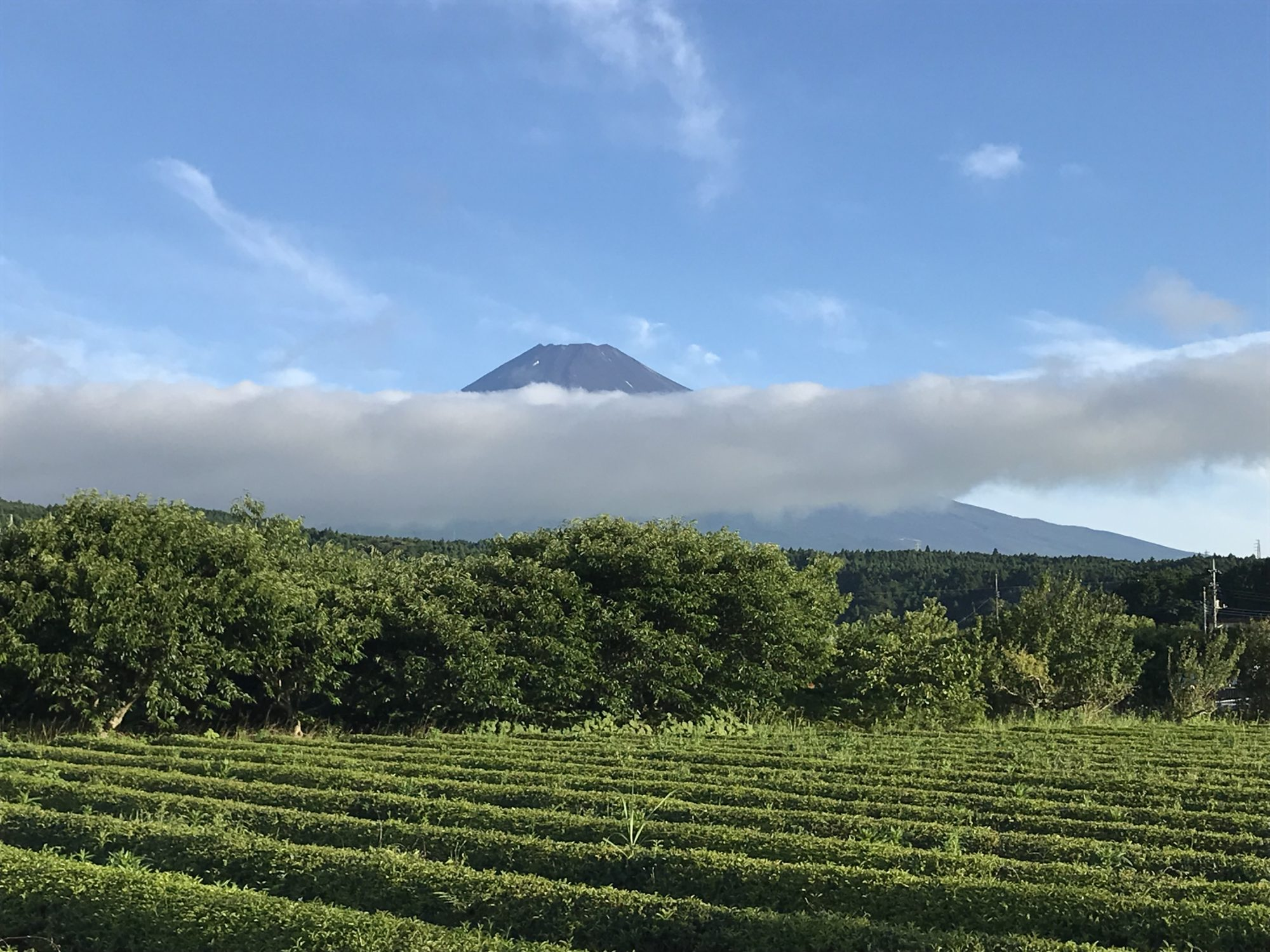 帯状の雲と富士山