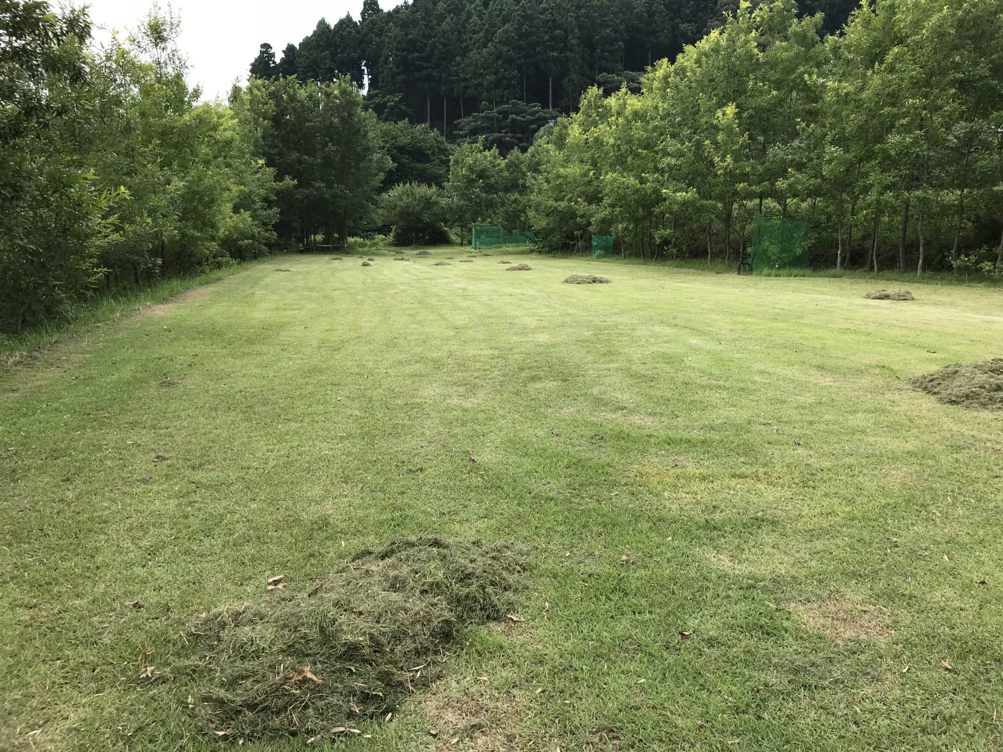 刈った芝をおおよそまとめた
