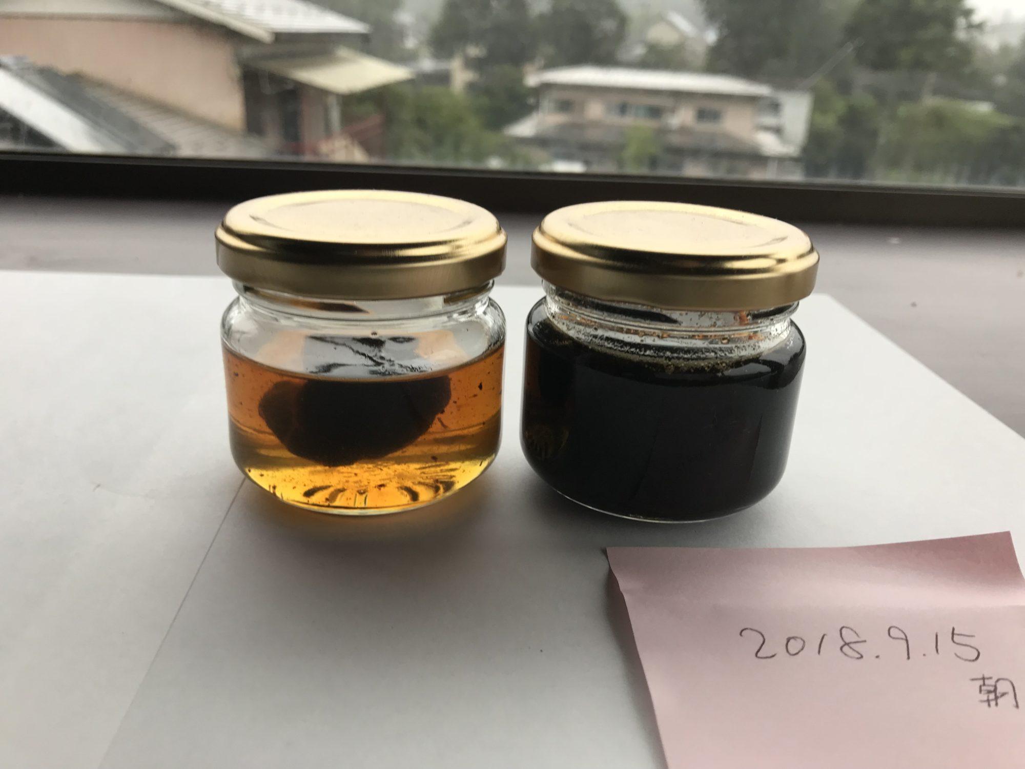 黒にんにく蜂蜜第一次試作9月15日