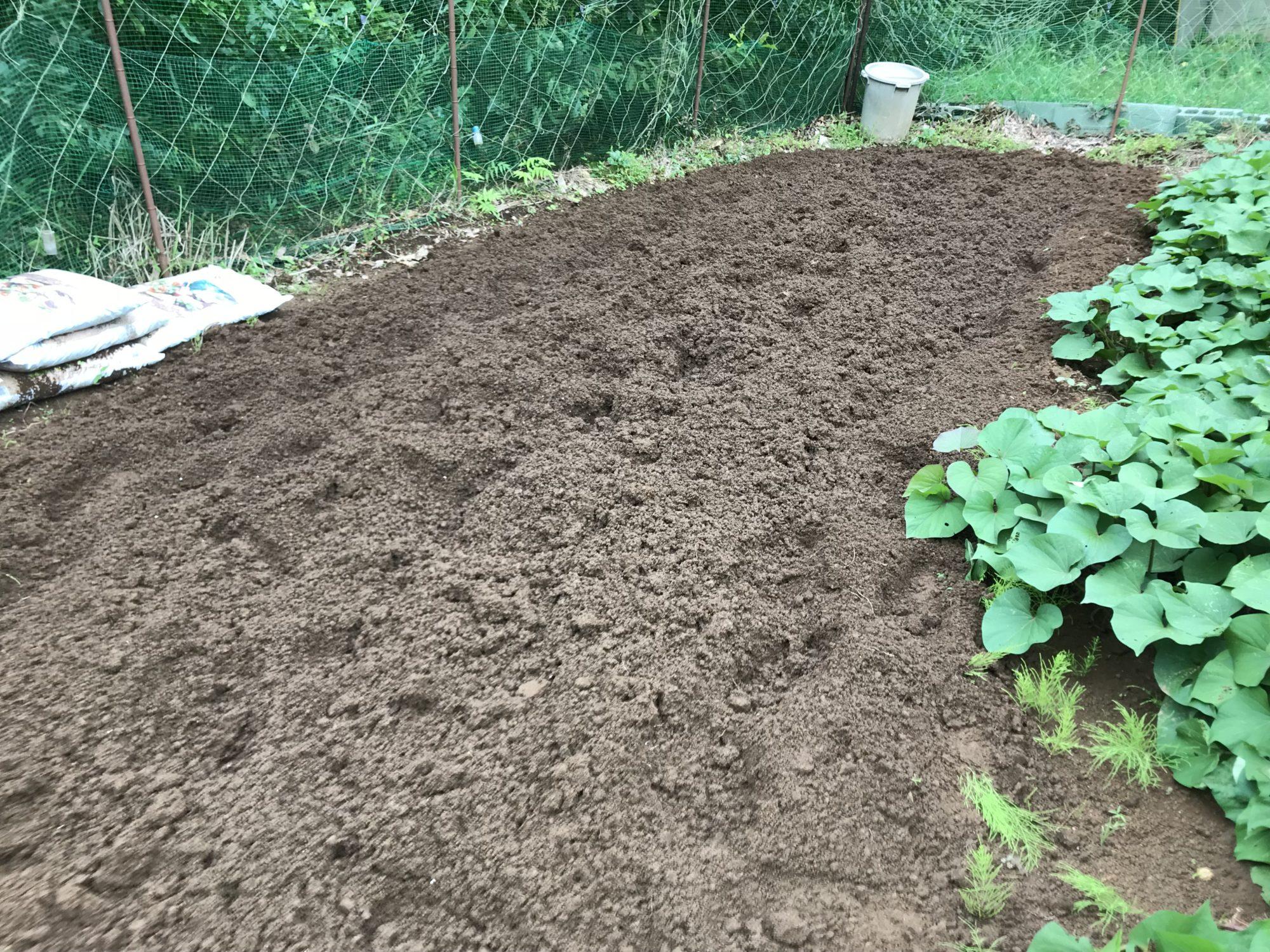 八月に土が流されたけれど、回復した家庭菜園