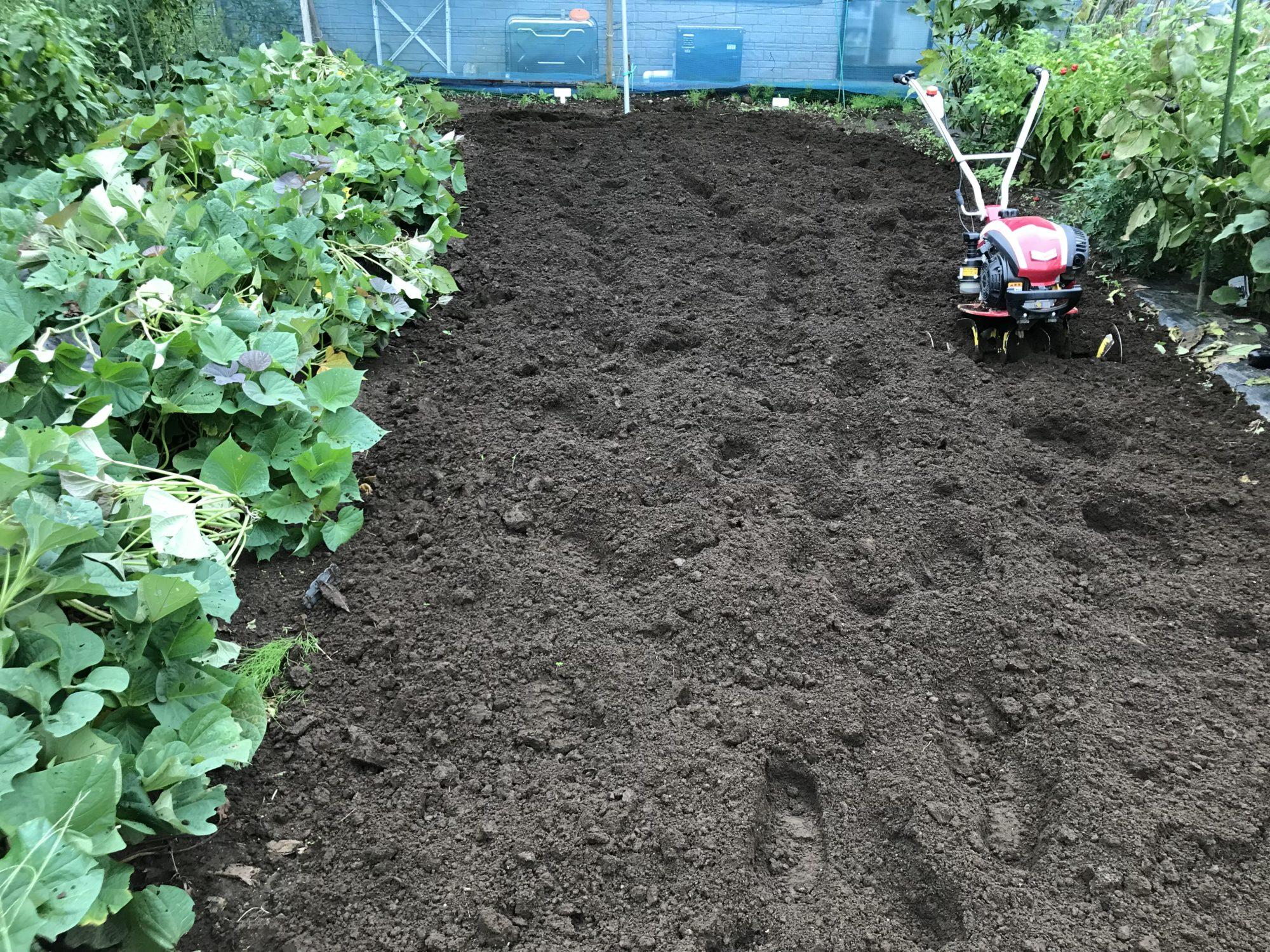家庭菜園林道