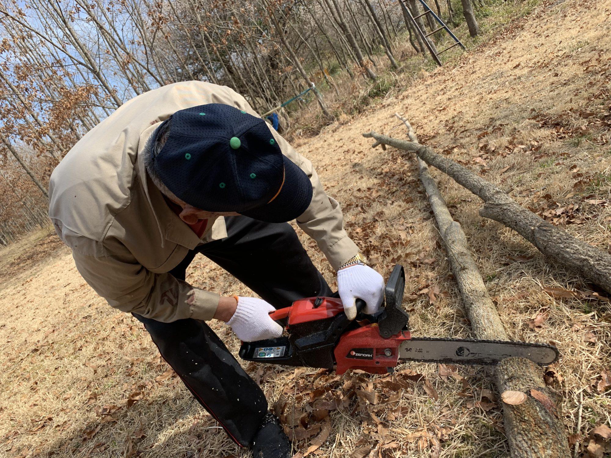 ほだ木作り